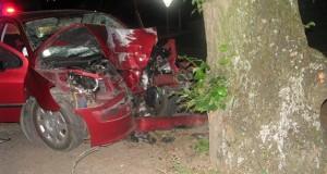Narazil do stromu, nehodu neprežil