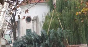 FOTO: V Skalici už rastie vianočný stromček. Vieme kedy ho rozsvietia.