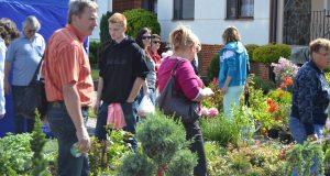 Kvetinové dni v Kátove už budúci víkend!