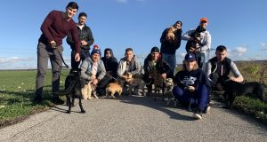 Psí útulok v Skalici je takmer neustále plný, s venčením pomohli hokejisti